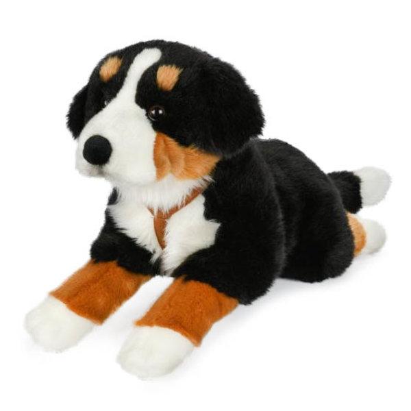 Hond knuffel Berner Sennen