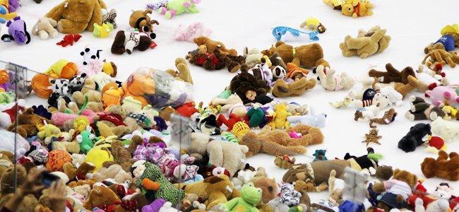 Teddyberen op het ijs