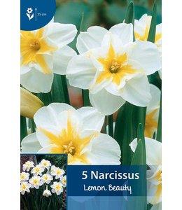 Narcis Lemon Beauty