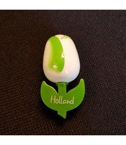 Tulpenmagnet Weiß / Grün