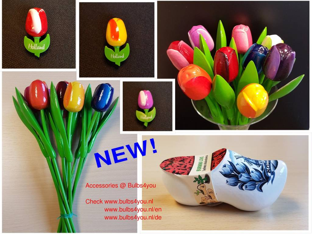 NEW!  Flowerbulb Accessories @ bulbs4you