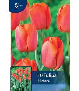 Tulip Michael