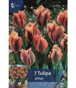 Tulpen Artist