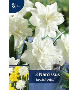 Narcissus White Medal