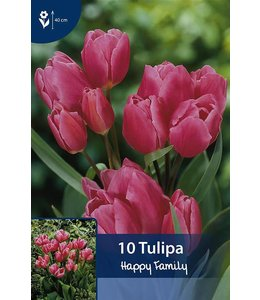 Tulip Happy Family