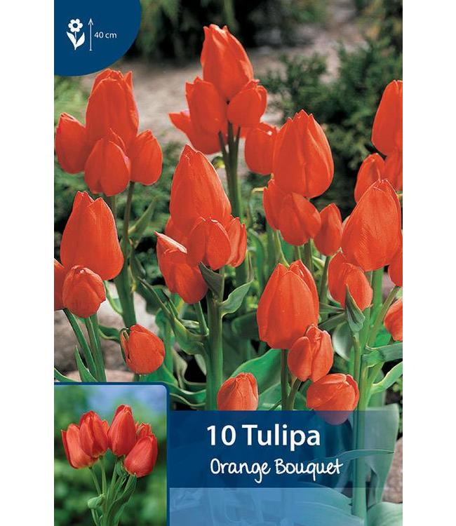 Tulpen Orange Bouquet