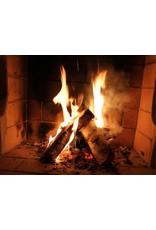 Bestes Brennholz entstaubt und handverlesen