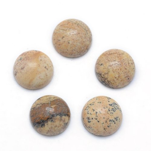 Natural Jaspis Edelsteen Cabochon 10mm