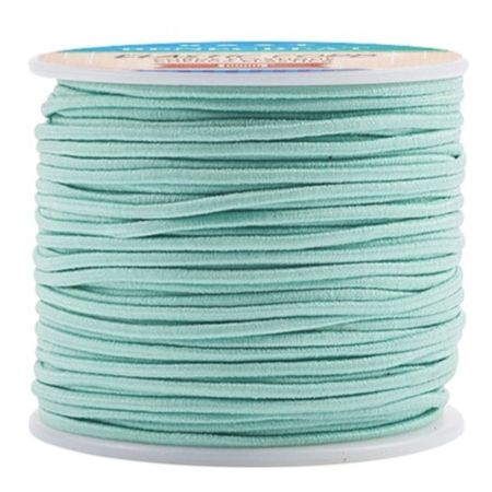 Elastic 2mm Turquoise, 1 meter