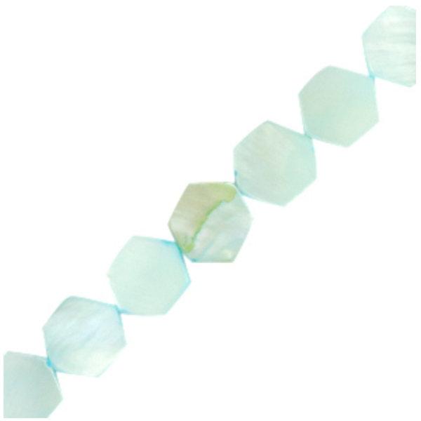 Schelp Kralen Hexagon Turquoise Blauw 8mm, streng 50 stuks