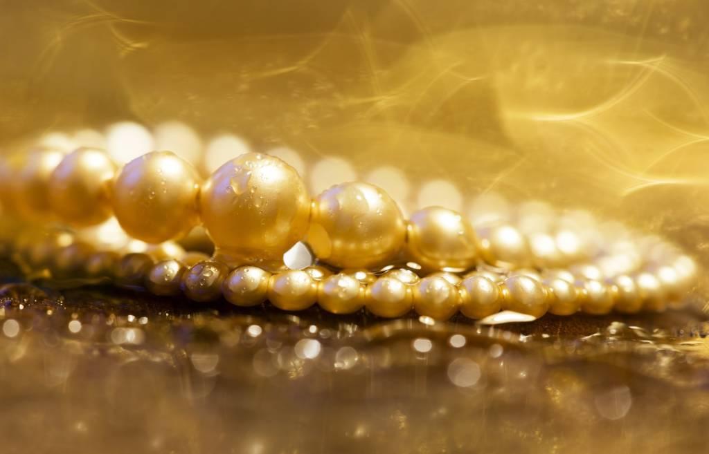 Gold Digger Bedeutung