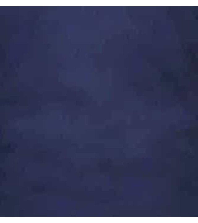 Gentile Bellini Luxus Klassische Herrenhemden - Slim Fit - 3081 - Blau