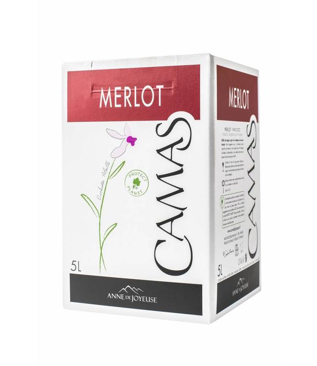 Anne de Joyeuse Camas Merlot BIB 5,000L Rood