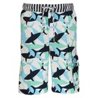 Snapper Rock Boardshort Shark