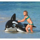 Intex Inflatable Whale