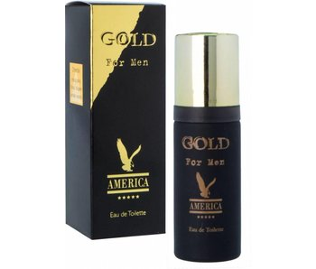 America Gold for Men Toilette