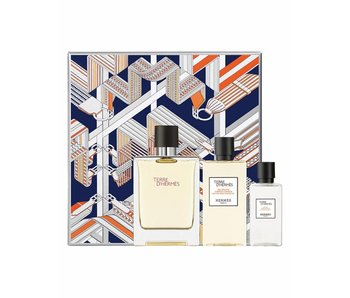 Hermes Terre d'Hermes Giftset Edt Spray 100ml After Shave Lotion 40ml Hair & NBody Shower Gel 80ml