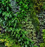 "Akustikbild mit Motiv ""Vertical Garden"""