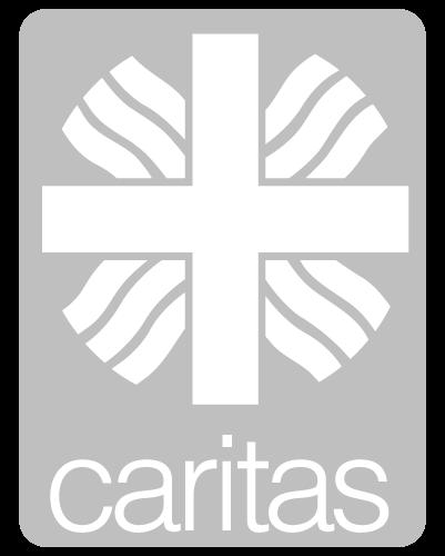 Montage der Akustikelemente bei Caritas