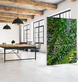 "Akustik Raumteiler mit Kunstmotiv ""Vertical Garden"""