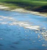"Leinwandprint ""Flussgestein"" - ohne Akustikämmung"