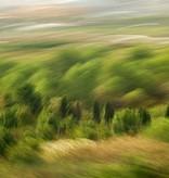 """Leinwandprint """"Heide"""" - ohne Akustikdämmung"""