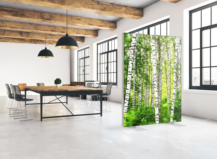 """Akustik Raumteiler mit Kunstmotiv """"Birch Forest"""""""