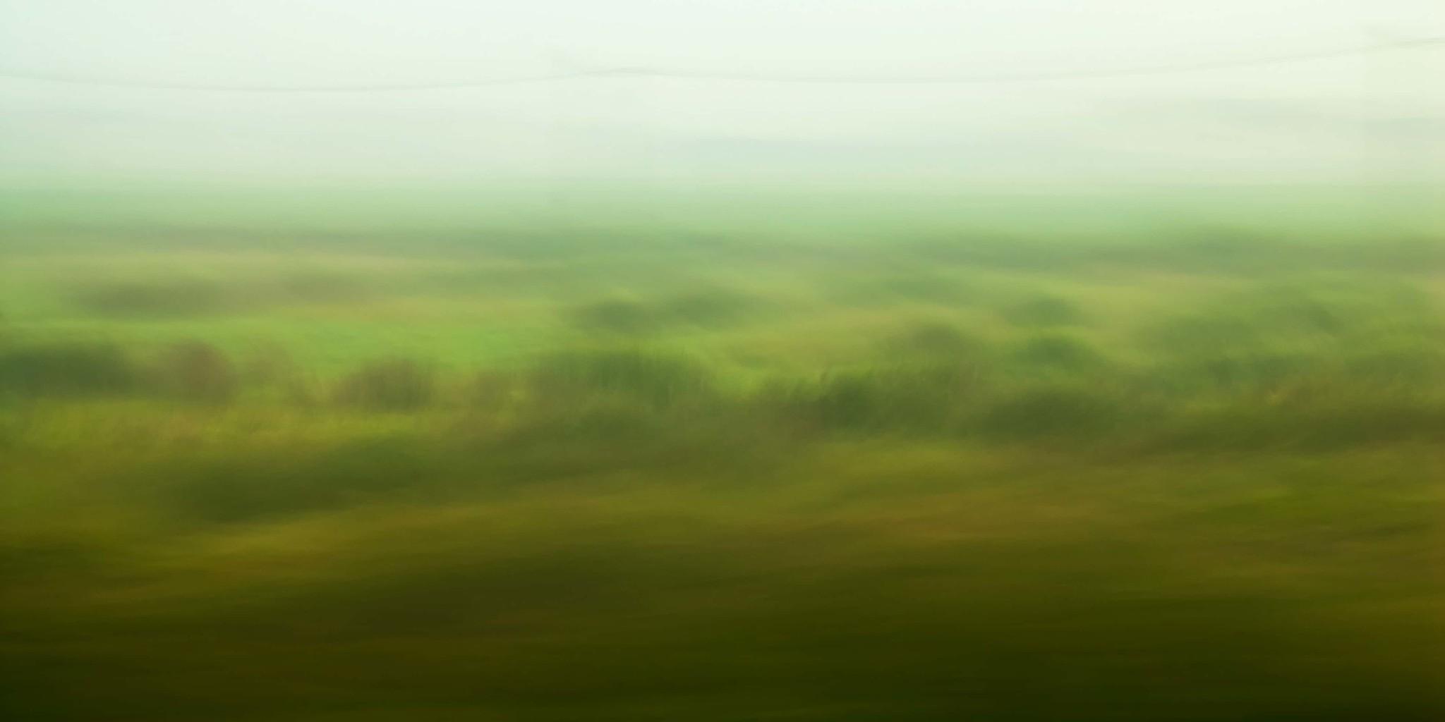 "Leinwandprint ""Nebelmorgen"" - ohne Akustikämmung"