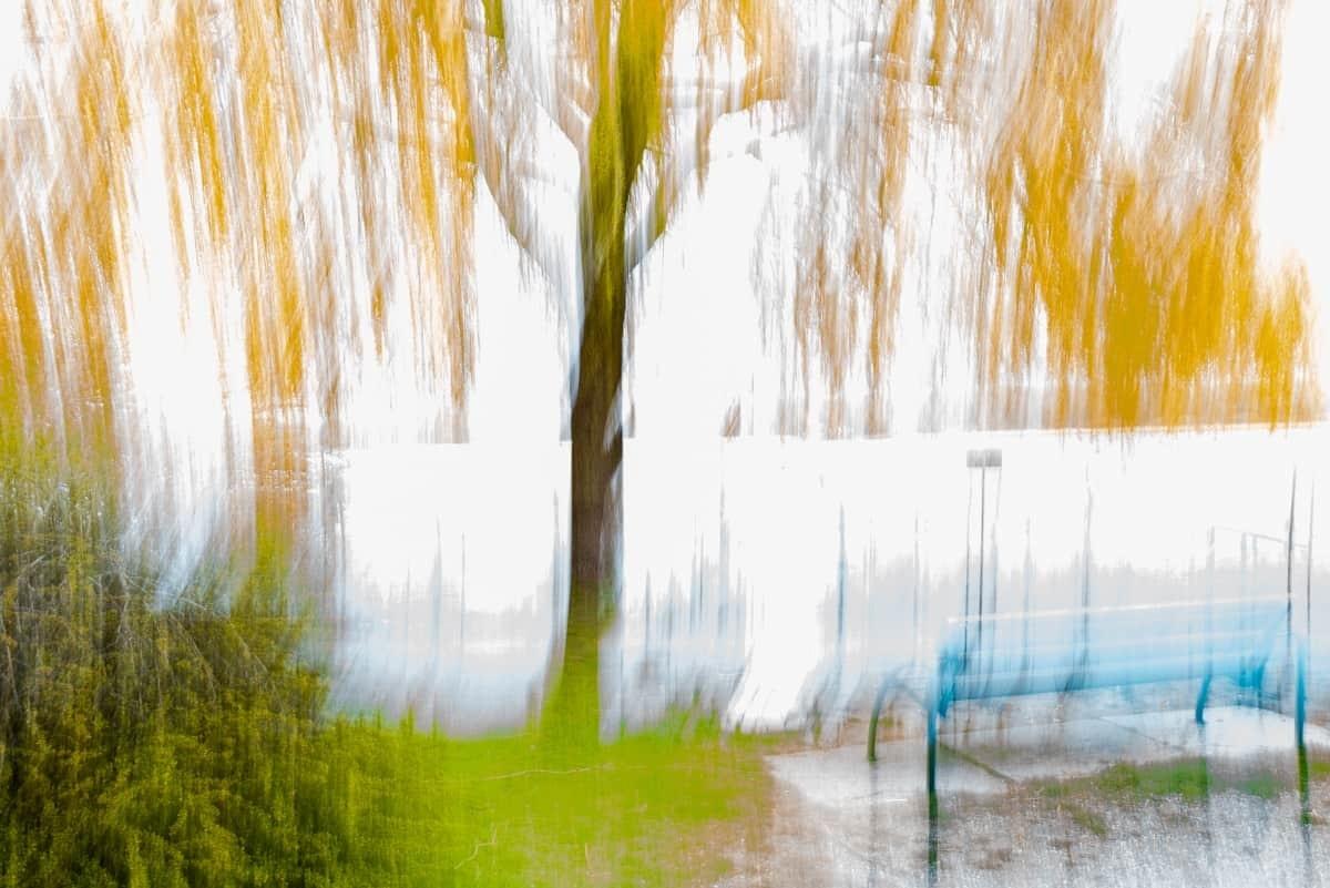 """Leinwand """"Frühling"""" ohne Dämmung"""