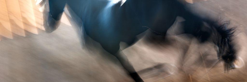 """Akustikbild mit Motiv """"Run 16"""" - Panorama-Format"""