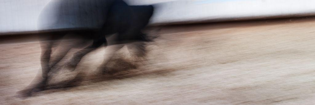 """Akustikbild mit Motiv """"Run 75"""" - Panorama-Format"""