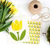 Voorjaar & Pasen