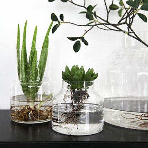 ONSHUS Vase Clear