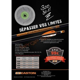 Easton EASTON TRIUMPH PROMO 12PCS €99