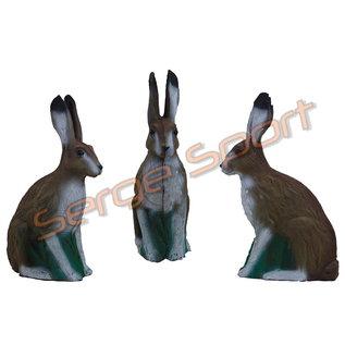 Imago 3D 3D Target European Hare