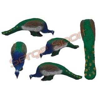 Imago 3D 3D Target Peacock