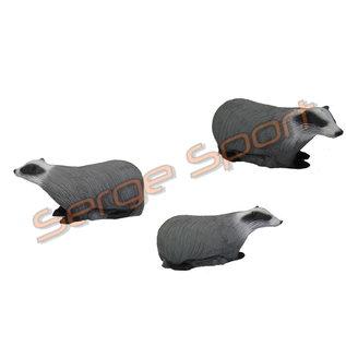 Imago 3D 3D Target Badger