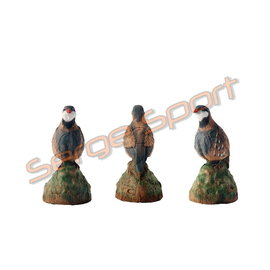 Imago 3D 3D Target Partridge - Singing