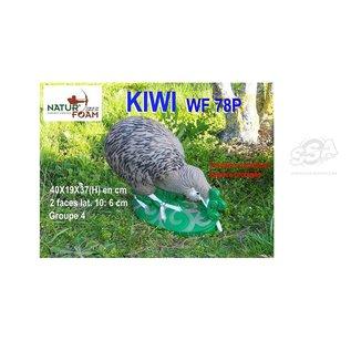 Natur Foam 3D Target Kiwi