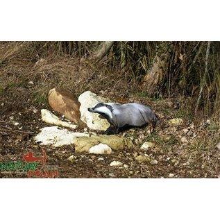 Natur Foam 3D Target Badger