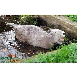 Natur Foam 3D Target Beaver - Swimming