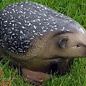 Natur Foam 3D Target Hedgehog