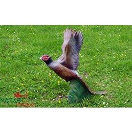 Natur Foam 3D Target Pheasant - Soaring