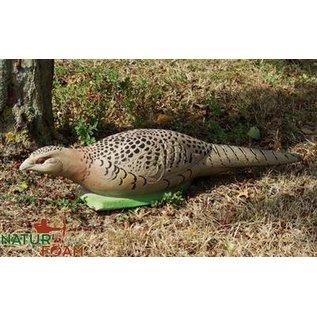 Natur Foam 3D Target Pheasant - Hen