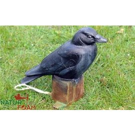 Natur Foam 3D Target Raven