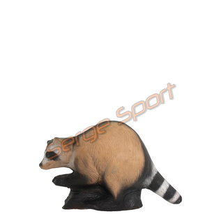 Wild Life 3D Target Raccoon
