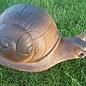 Wild Life 3D Target Land Snail
