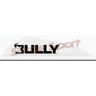 Easton Easton Bully Boattail - Plastic Vanes - 100/pk