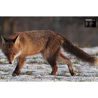 Maximal Maximal Animal - Small Game Face
