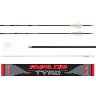 Avalon Avalon Arrows Carbon Tyro 4.2 With Vanes/Nock Sml/Point Per Unit